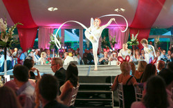 Acrobatic entertainment