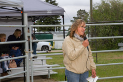 Judge for beef showmanship/grooming
