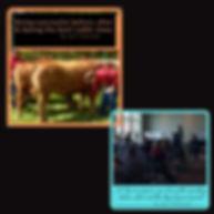 Audio book(1).jpg