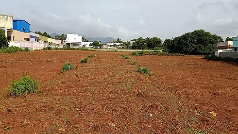 Vasantham Nagar-3.jpg