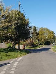 A road in Longham