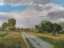 Herefordshire Summer