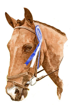 horse only.jpg