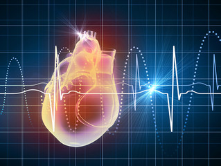 Why You Should Know Your Personal Heart Rate Zones