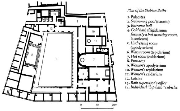 Plan of Stabian Baths.png