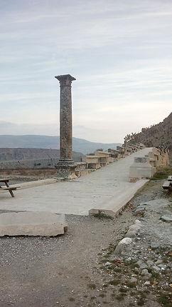 Caracalla Memorial Column