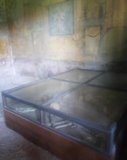 scheletons found in Pompei