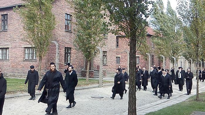 Auscwitz Jewish visitors