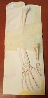 Skeleton Arm Card