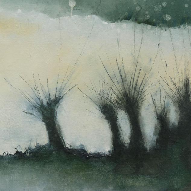 Gallery Skycycle Cu Trees.jpg