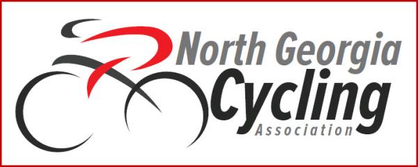 NGCA Logo