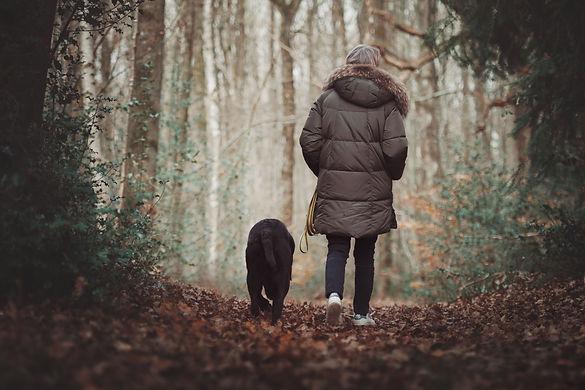 photo chien et maître