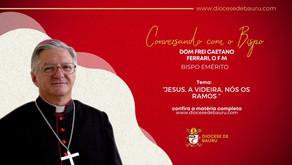JESUS, A VIDEIRA, NÓS OS RAMOS-Dom Frei Caetano Ferrari, O F M