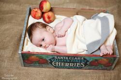 צילום תינוקות בקופסא
