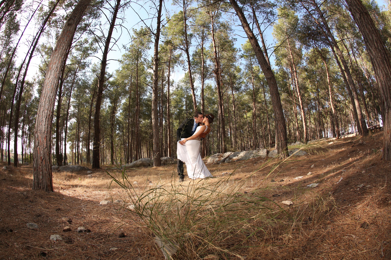 החתונה של רותם סבג 10.06.14