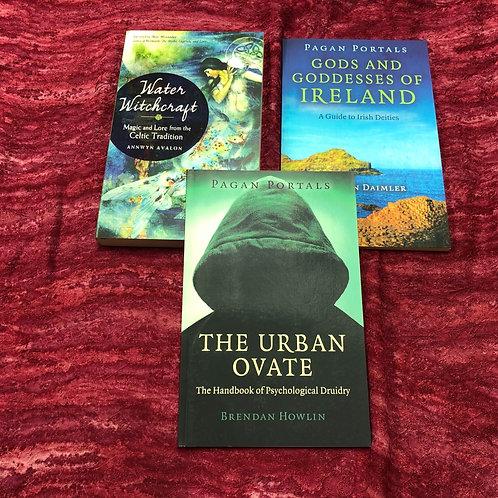 Celtic Book Lot