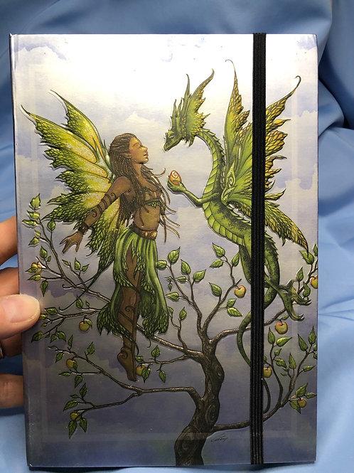 Fairy & Dragon Gift Blank Journal