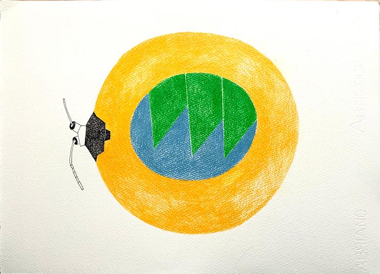 insekt-web8127.png