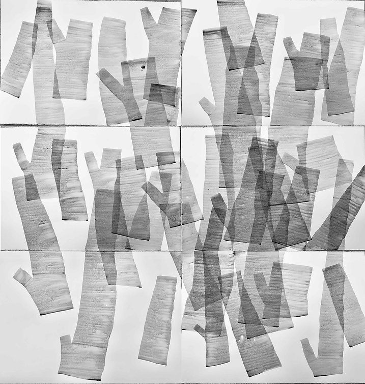 träd-70.jpg