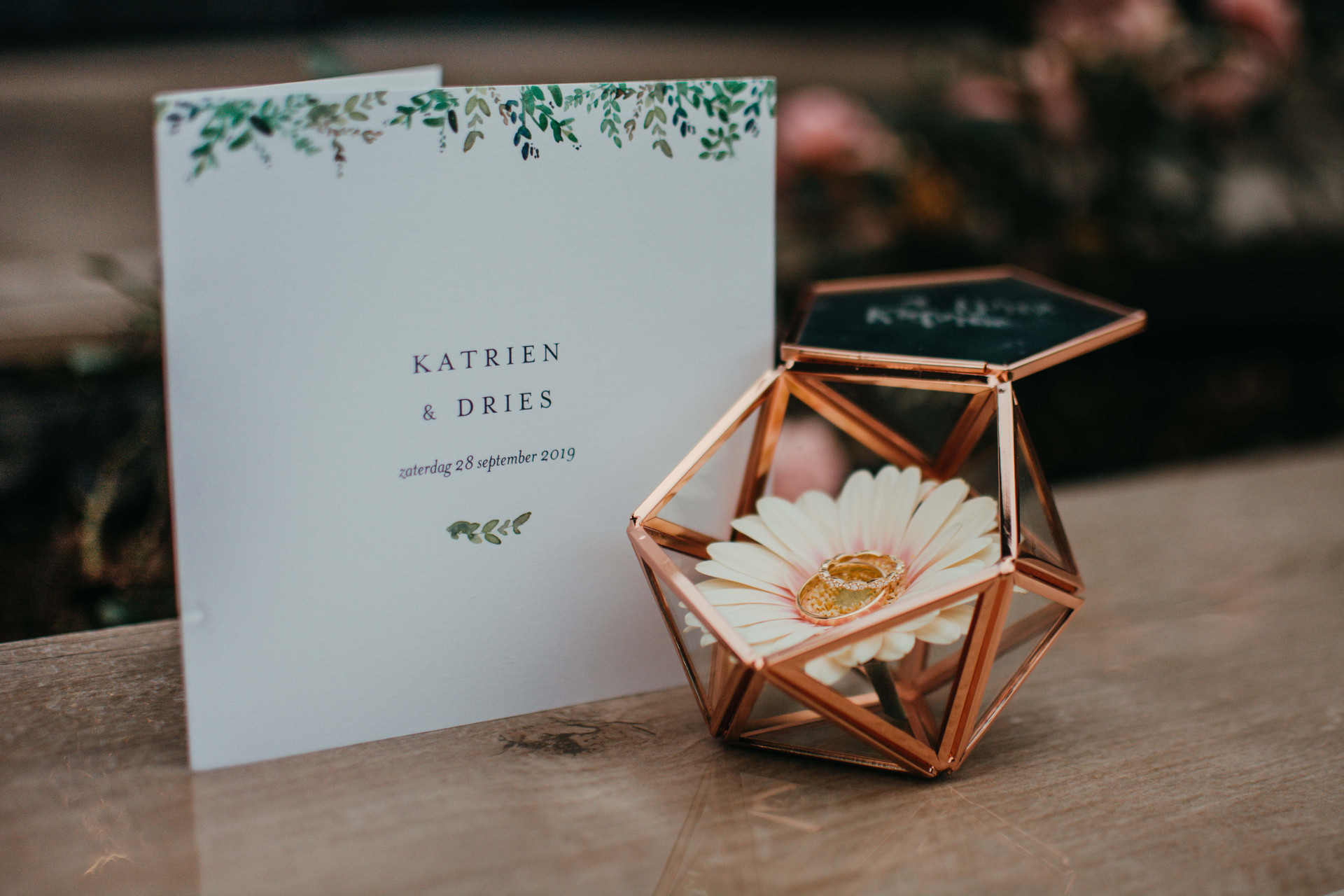 Katrien-Dries-website-2.jpg