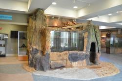 Oxbow Meadows Enviromental Center