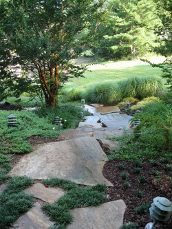 by Ponds & Plants