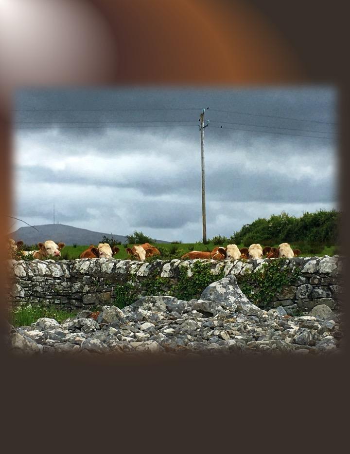 Energy Work in Ireland