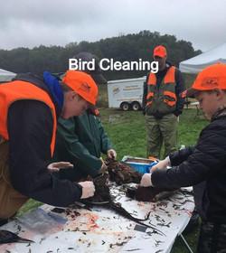 Bird Cleaning_edited