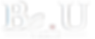 logo blanc transparent_edited.png