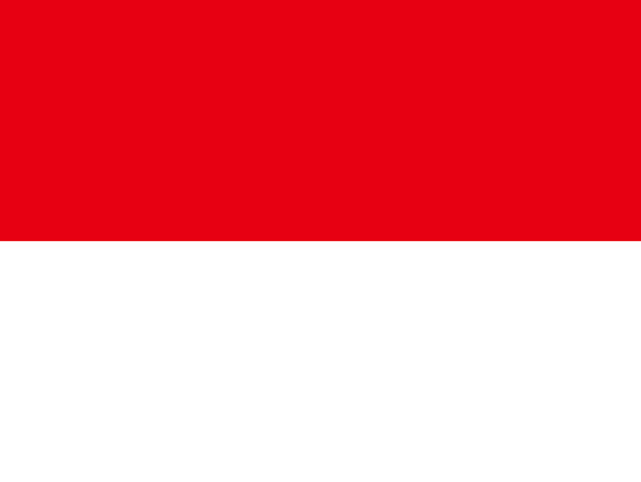 인도네시아(INDONESIA)