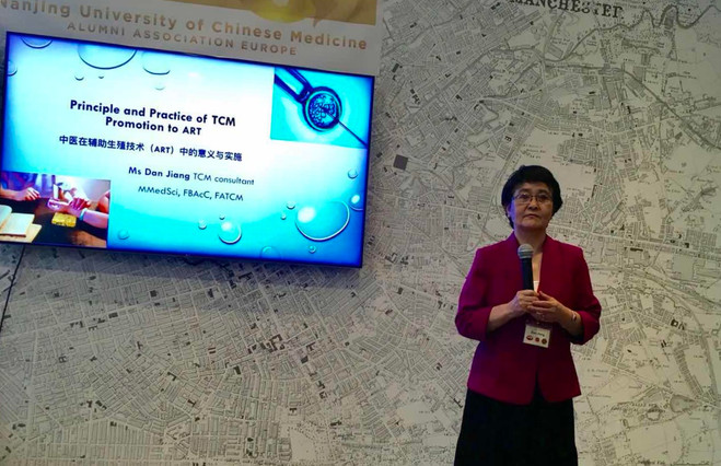 Ms Dan Jiang was presenting at a event of the BUCM European Alumni