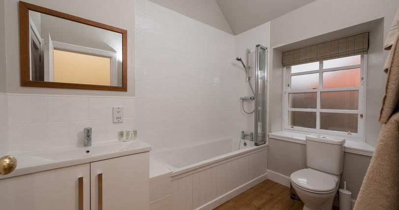 Overview - MS main bathroom.jpg