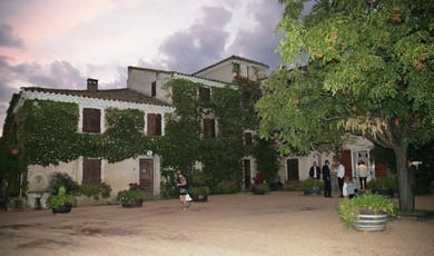 Un mariage sous les oliviers au Domaine de Beauregard à Monteux, VaucluseUn mariage sous les oliviers au Domaine de Beauregard à Monteux, Vaucluse