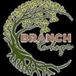 BTH Website Logo.png
