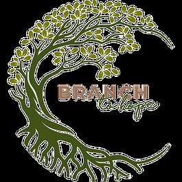 BTH APP Logo copy.png