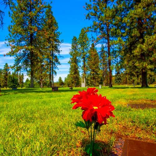 R-Cemetery-Grounds-4.jpg