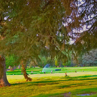 Spokane-Cheney Memorial Gardens