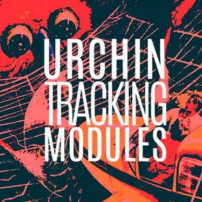 GET EYE OPENING RESULTS FROM URCHIN TRACKING MODULES! (UTM CODES)