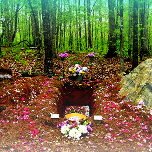 Forest Grove Green Burial & Cremation section