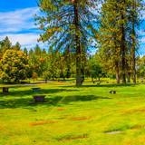 R-Cemetery-Grounds-2.jpg