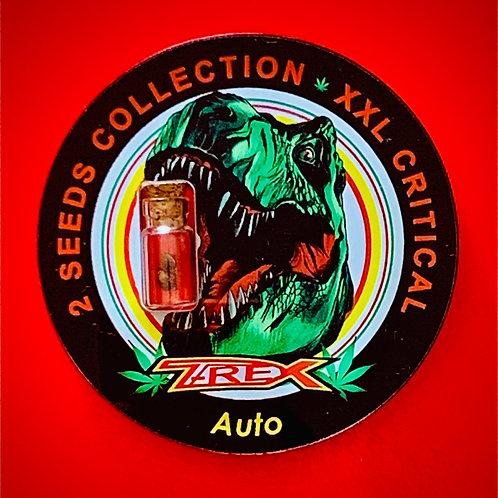 XXL CRITICAL Auto - semi da collezione