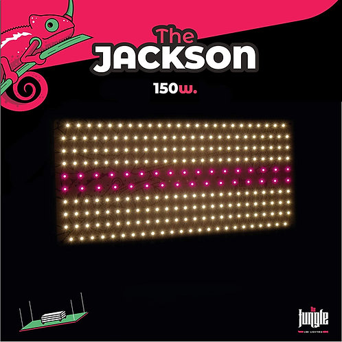 Jangle Jackson 150w