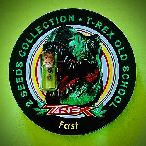 T-REX OLD SCHOOL Fast - semi da collezione
