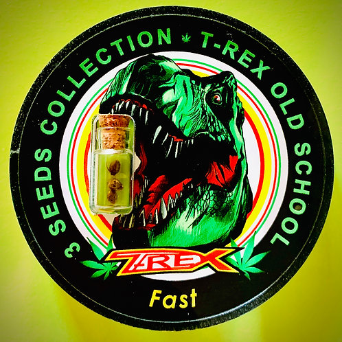 T-REX OLD SCHOOL Fast - confezione da 3 semi da collezione