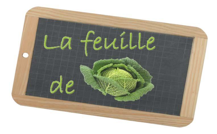 Retrouvez la Feuille de Chou FdC 153 des Jardins de Cocagne de Fleurance pour les paniers des 08 et 11 septembre 2020