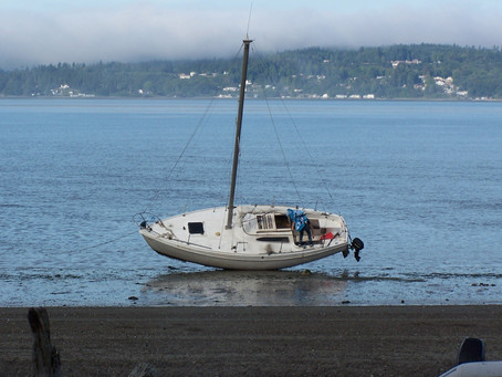 Presenting: South Sound Sailing Tours