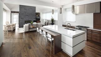Euro Contemporary Kitchen
