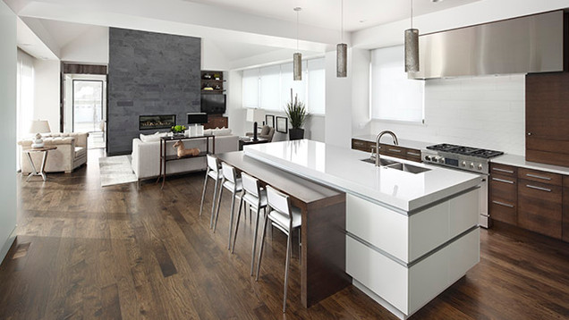 Euro Contemporary Kitchen