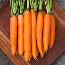 Carrot, Orange
