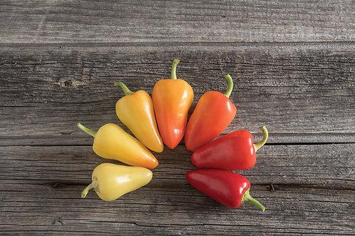 Pepper, Havasu Chili